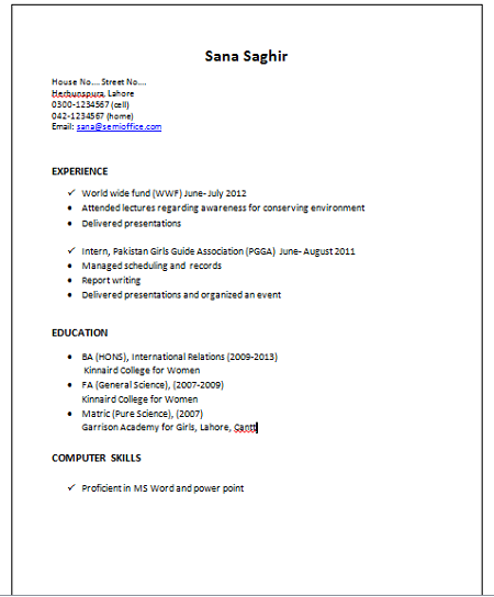 Resume Sample for International Relations